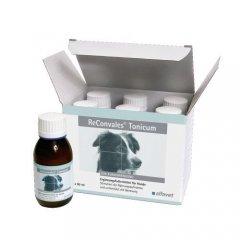 Alfavet ReConvales® Tonicum 6 x 90ml...