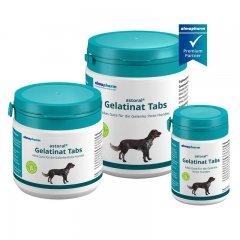 astoral® Gelatinat Tabs für Hunde