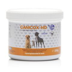 CANICOX® HD 100 Kautabletten für Hunde
