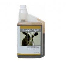 Alfavet HepatoSan® liquid 1 Liter...